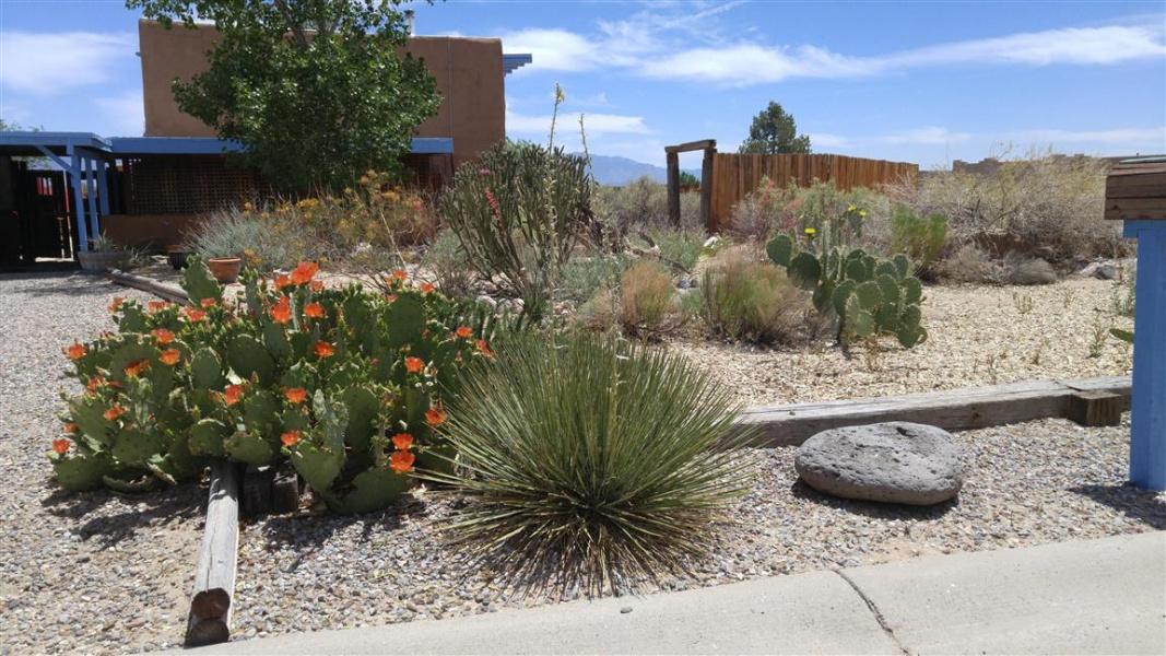 985 Bali Road SE, Rio Rancho, New Mexico 87124, ,House,SOLD,985 Bali Road SE,1004